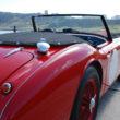 Austin Healey 100/6 BN4 | R/H Rear 3/4 Close Up | Murray Scott-Nelson
